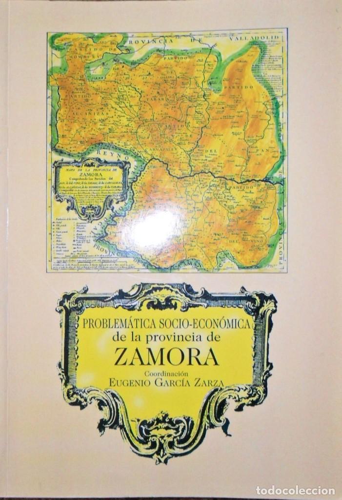 PROBLEMÁTICA SOCIO ECONÓMICA DE LA PROVINCIA DE ZAMORA. EUGENIO GRACÍA ZARZA. (Libros de Segunda Mano - Pensamiento - Sociología)