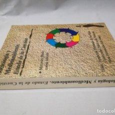 Libros de segunda mano: SOCIOLOGIA Y MEDIOAMBIENTE-ESTADO DE LA CUESTION-MERCEDES PARDO-FUNDACION FERNANDO DE LOS RIOSYO13. Lote 131064856