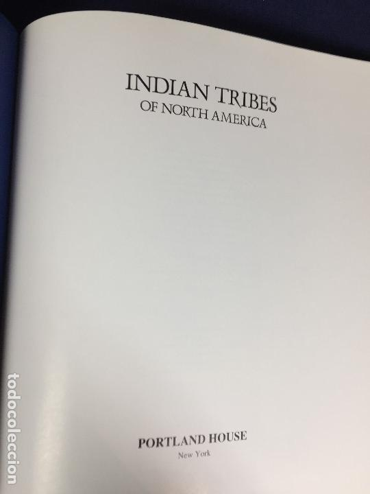 Libros de segunda mano: indian tribes of north america tribus de norteamérica josepha sherman historia cultura nativos s xx - Foto 7 - 148301762