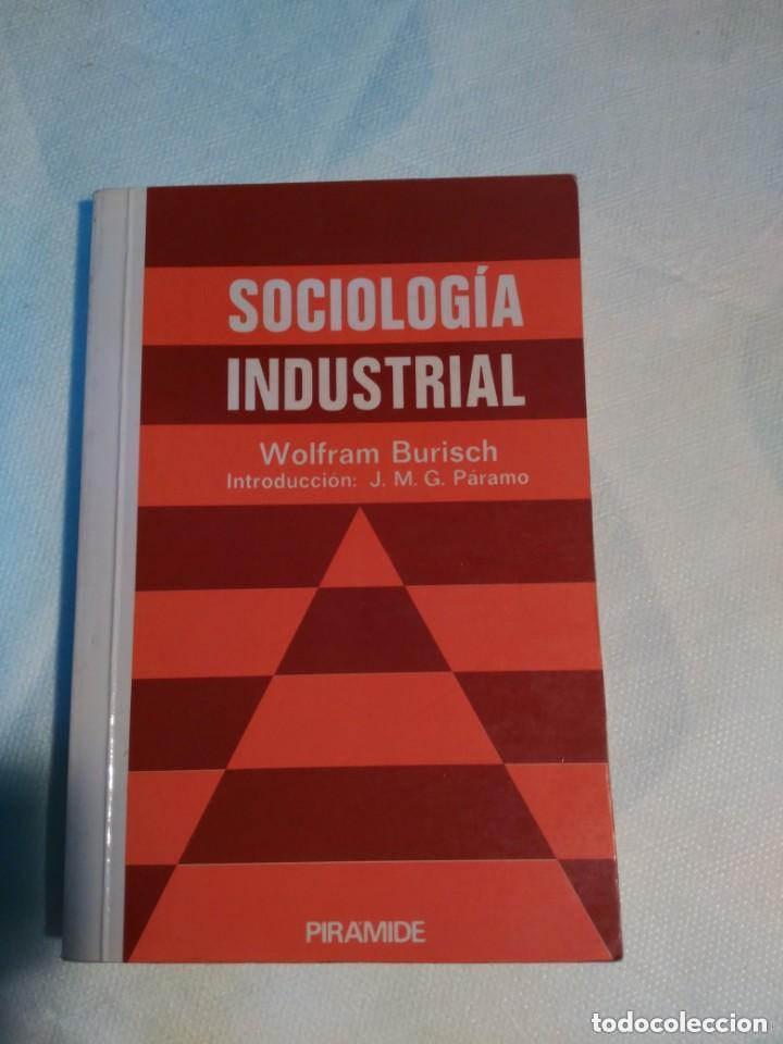SOCIOLOGIA INDUSTRIAL (Libros de Segunda Mano - Pensamiento - Sociología)