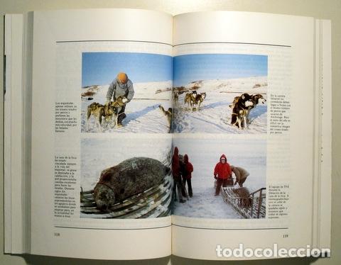 Libros de segunda mano: SARMIENTO, Carmen - LOS MARGINADOS - Madrid 1985 - Ilustrado - Foto 2 - 166975266