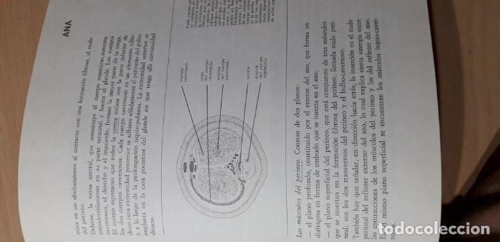 Libros de segunda mano: LA VIDA DE LA PAREJA/ LA PSICOLOGIA MODERNA/ / / H501 - Foto 4 - 167559204