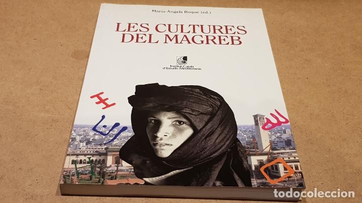 LES CULTURES DEL MAGREB / MARIA-ÁNGELS ROQUE / INS. D'ESTUDIS MEDITERRANIS / OCASIÓN ! (Libros de Segunda Mano - Pensamiento - Sociología)
