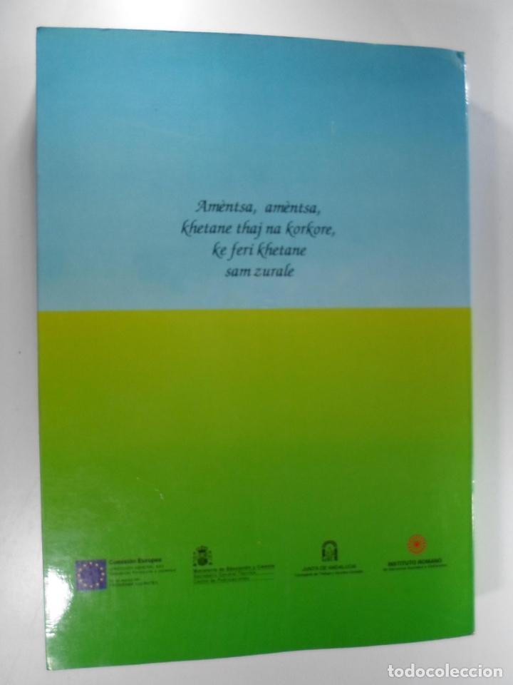 Libros de segunda mano: LA EDUCACIÓN DE LOS NIÑOS GITANOS E ITINERANTES : I CONGRESO GITANO DE LA UNIÓN EUROPEA, SEVILLA - Foto 2 - 262697795