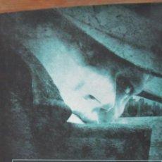 Libros de segunda mano: LOS ÁNGELES DE PALERMO DE PHILIPPE CAVALIER (CÍRCULO DE LECTORES). Lote 44729064
