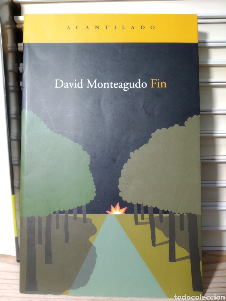 DAVID MONTEAGUDO. FIN. ACANTILADO (Libros de segunda mano (posteriores a 1936) - Literatura - Narrativa - Terror, Misterio y Policíaco)