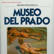 Libros de segunda mano: LIBRO GRANDES PINACOTECAS, MUSEO DEL PRADO. PINTORES ESPAÑOLES DEL SIGLO XIX, DE EDICIONES ORGAZ, S.. Lote 22923691