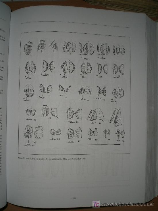 Libros de segunda mano: EL LEGADO ARQUEOLÓGICO DE MENDANDIA. LOS MODOS DE VIDA DE LOS ÚLTIMOS CAZADORES...(BURGOS) - Foto 3 - 24986782