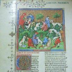 Libros de segunda mano: EL LIBRO DE LA CAZA (A/ CAZ- 002). Lote 3403436