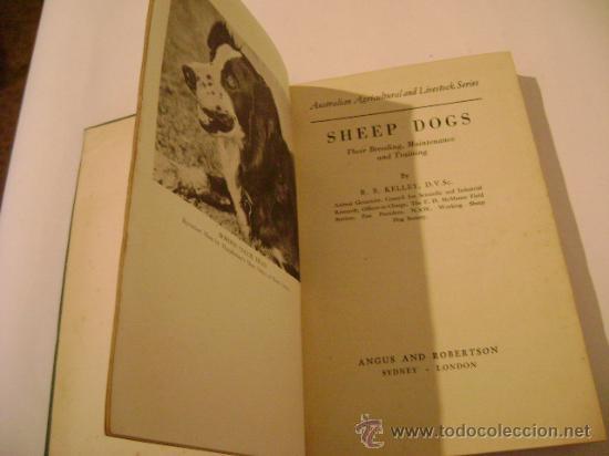 Libros de segunda mano: SHEEP DOGS. Autor: R.B. KELLEY.Perros Ovejeros. - Foto 2 - 9095544