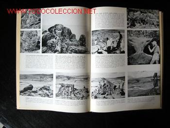 Libros de segunda mano: - Foto 9 - 9988657