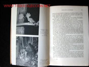 Libros de segunda mano: DESFILE DE LA NATURALEZA, por FRANK W. LANE - Foto 3 - 25806122
