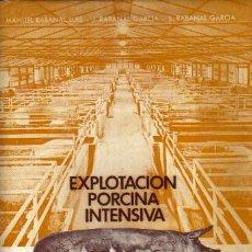 Libros de segunda mano: EXPLOTACIÓN PORCINA INTENSIVA: (ASPECTOS TÉCNICO-ECONÓMICOS) . Lote 10522864