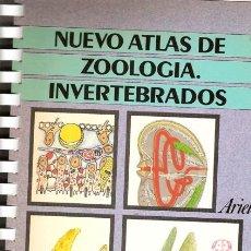 Livres d'occasion: LIBRO NUEVO ATLAS DE ZOOLOGÍA. INVERTEBRADOS, DE J. PUJADE. EDICIONES ARIEL. CON NUMEROSAS ILUSTRACI. Lote 26927027