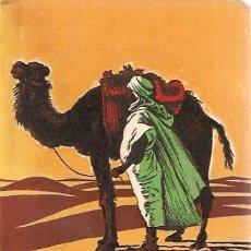 Libros de segunda mano: EL SAHARA SEIX BARRAL. Lote 14380634
