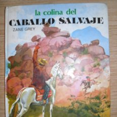 Libros de segunda mano: LA COLINA DEL CABALLO SALVAJE. ZANE GREY. ED: SUSAETA. 1980. COLECCION SAETA. . Lote 27477174