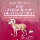 Libros de segunda mano: JOAQUIN MECO CABRERA - LOS OVICAPRINOS DE VILLAVERDE. FUERTEVENTURA. Lote 163713988