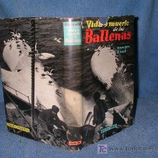 Libros de segunda mano: VIDA Y MUERTE DE LAS BALLENAS - GEORGES BLOND - 1ª EDICION ILUSTRADO.. Lote 17634271