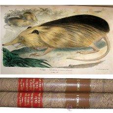 Libros de segunda mano: 1851 MEMORIAS HISTORIA NATURAL ISLA CUBA FELIPE POEY LAMINAS ILUMINADAS 2 TOMOS (COMPLETA). Lote 19974451