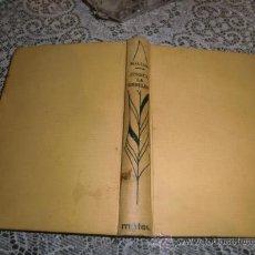 Libros de segunda mano: JESSICA LA REBELDE DE M.G.LOWE. Lote 27447223