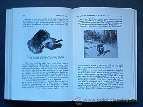 Libros de segunda mano: PERROS DE CAZA - Foto 4 - 27410435