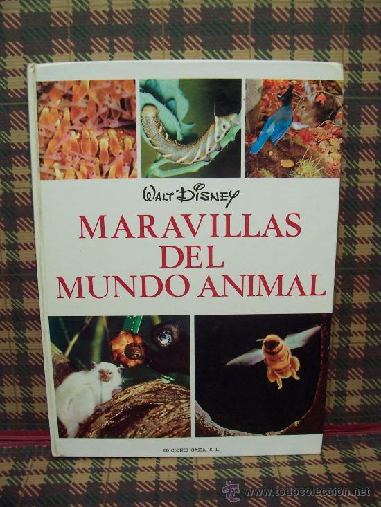 WALT DISNEY - MARAVILLAS DEL MUNDO ANIMAL - ED. GAISA 1968 - ILUSTRADO (Libros de Segunda Mano - Literatura Infantil y Juvenil - Otros)
