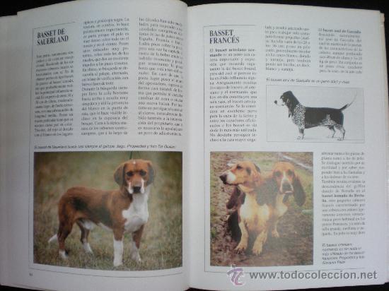 Libros de segunda mano: Libro. Caza. El gran libro del cazador y de los perros de caza. Claudio de Giuliani. Barcelona, 2004 - Foto 2 - 28327753