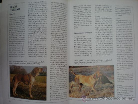 Libros de segunda mano: Libro. Caza. El gran libro del cazador y de los perros de caza. Claudio de Giuliani. Barcelona, 2004 - Foto 3 - 28327753
