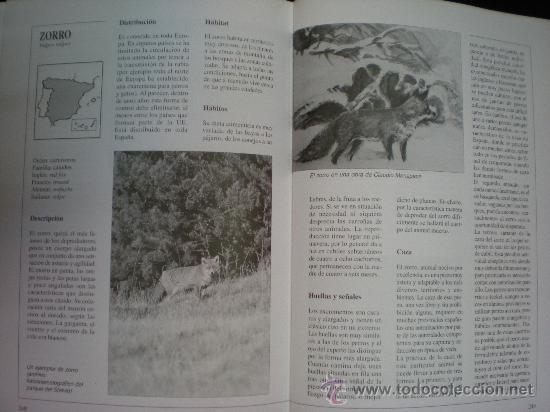 Libros de segunda mano: Libro. Caza. El gran libro del cazador y de los perros de caza. Claudio de Giuliani. Barcelona, 2004 - Foto 7 - 28327753