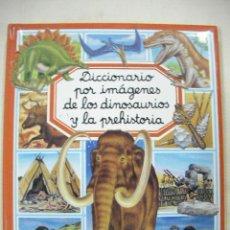 Libros de segunda mano: DICCIONARIO POR IMAGENES DE LOS DINOSAURIOS Y LA PREHISTORIA. Lote 28364625