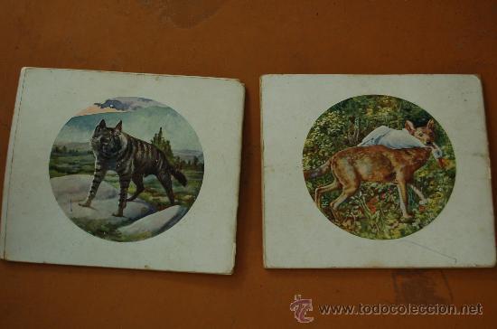 Libros de segunda mano: Pareja de libros albumes de animales ed. Ramon Sopera. Numeros 1 y 3. - Foto 4 - 29902542