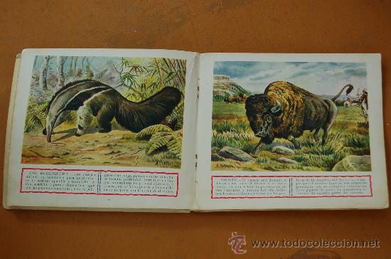 Libros de segunda mano: Pareja de libros albumes de animales ed. Ramon Sopera. Numeros 1 y 3. - Foto 5 - 29902542