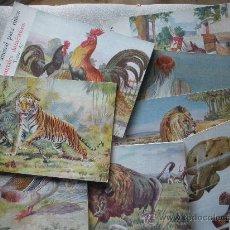 Second hand books - ocho libritos reino animal editorial sopena de 1959 - 30316539