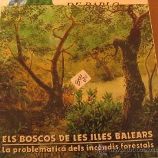 Libros de segunda mano: ELS BOSCOS DE LES ILLES BALEARSSA NOSTRA2 €. Lote 32676783