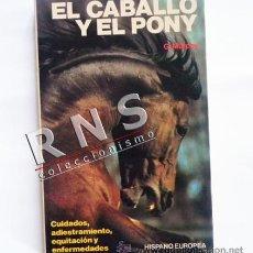 Libros de segunda mano: EL CABALLO Y EL PONY - GUÍA CUIDADOS ADIESTRAMIENTO EQUITACIÓN MONTAR PASOS -MUY ILUSTRADO LIBRO. Lote 33692504