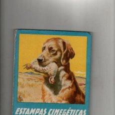 Libros de segunda mano: JUAN CAZADOR ESTAMPAS CINEGETICAS ESPAÑOLAS BARCELONA 1943 EDITORIAL MOLINO (CAZA). Lote 34339795