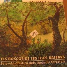 Libros de segunda mano: ELS BOSCOS DE LES ILLES BALEARSSA NOSTRA2,00 € . Lote 34690010