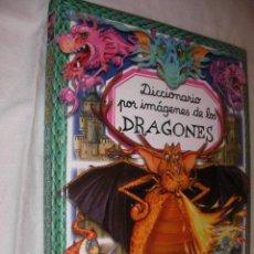 Libros de segunda mano: DICCIONARIO POR IMAGENES DE LOS DRAGONES - ENVIO GRATIS A ESPAÑA. Lote 99688023