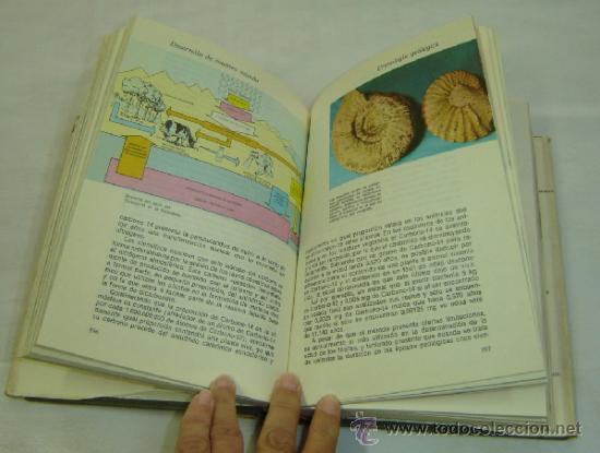 Libros de segunda mano: HISTORIA NATURAL-Biblioteca Hispania Ilustrada-ed.Ramon Sopena 1974 - Foto 3 - 37036869