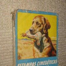 Libros de segunda mano: ESTAMPAS CINEGÉTICAS ESPAÑOLAS, POR JUAN CAZADOR. EDITORIAL MOLINO, 1943, CAZA, ILUSTRADO. Lote 38290062