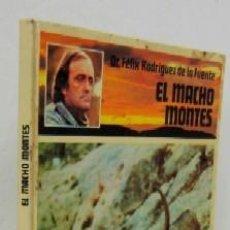 Libros de segunda mano: EL MACHO MONTES. Lote 39920775