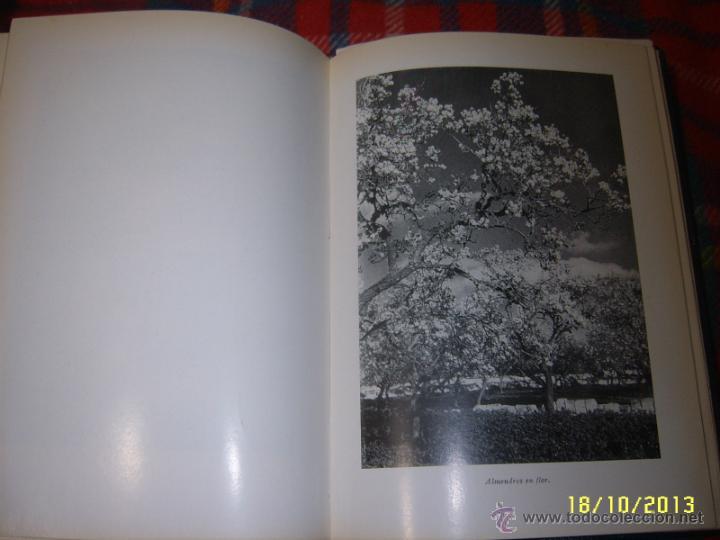 Libros de segunda mano: MARE NOSTRUM.25 ANIVERSARIO. 1ª EDICIÓN 1967.UNA AUTÉNTICA RAREZA.UNA JOYA!!!!. - Foto 35 - 125867498
