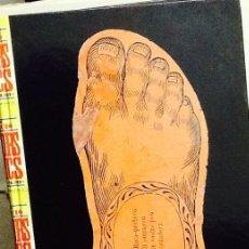 Libros de segunda mano: EXPOSICIÓ TRESORS GRÀFICS. SALÓ DEL TINELL MUSEU D'HISTÒRIA DE LA CIUTAT 1998-1999 .. Lote 40692143