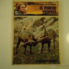 Libros de segunda mano: EL MACHO MONTES. Lote 40740782