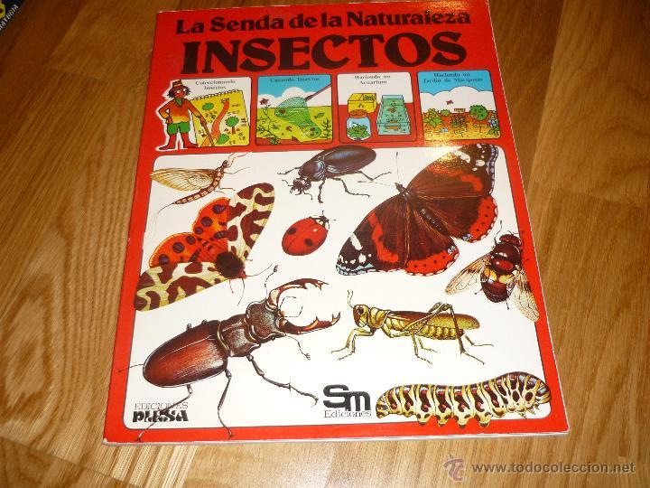 LA SENDA DE LA NATURALEZA - INSECTOS - EDICIONES PLESA 1977 (Libros de Segunda Mano - Literatura Infantil y Juvenil - Otros)