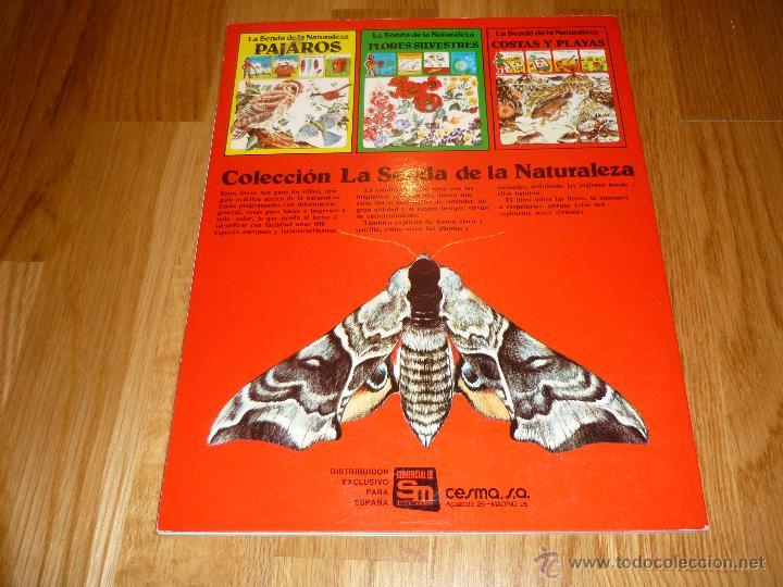 Libros de segunda mano: LA SENDA DE LA NATURALEZA - INSECTOS - EDICIONES PLESA 1977 - Foto 2 - 40915857
