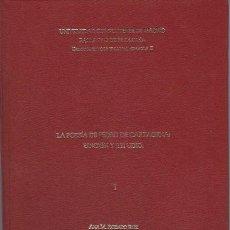 Libros de segunda mano: TESIS DOCTORAL, LA POESÍA DE PEDRO DE CARTAGENA, EDICIÓN Y ESTUDIO, ANA Mª RODADO RUIZ MADRID 1997. Lote 40941316