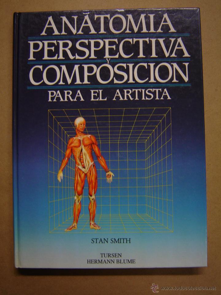anatomía, perspectiva y composición para el art - Comprar en ...