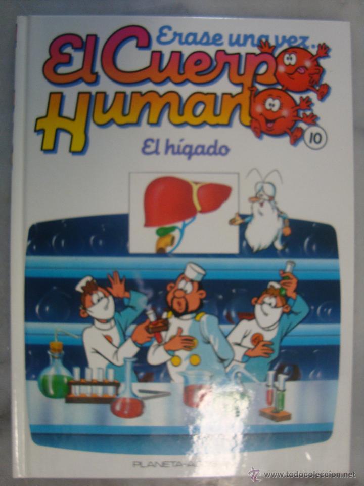 ÉRASE UNA VEZ EL CUERPO HUMANO. Nº 10. EL HIGADO (Libros de Segunda Mano - Literatura Infantil y Juvenil - Otros)