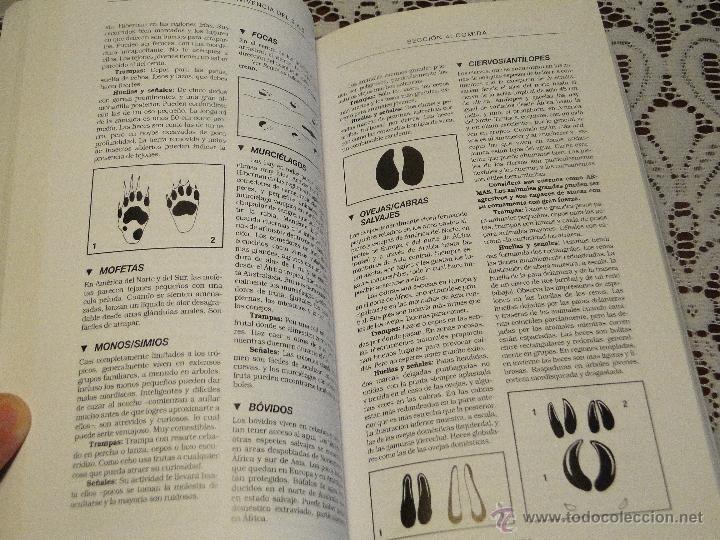 manual de supervivencia del sas.---wiseman, joh - Comprar